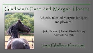 Gladheart Farm and Morgan Horses